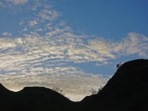 Lerags Glen near Oban Stephen Gates ARPS