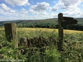 Peak District vista Christine Barrass