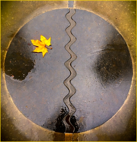 Circle and Leaf by Jeff Royce