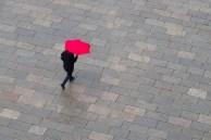 Rainy Day Dave Harris LRPS