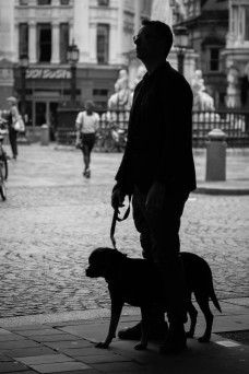 One Man and His Dog by John McCarthy LRPS