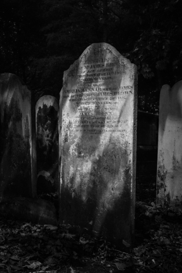 Bunhill Fields by Jose Souto