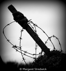 Keep Out by Margaret Stredwick