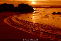Golden Sunset by Margaret Stredwick
