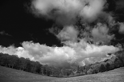 In the Chilterns by Stephen Gates ARPS