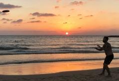 Catching the Sun by Limor Tevet