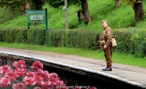 Lone Remembrance by Margaret Stredwick