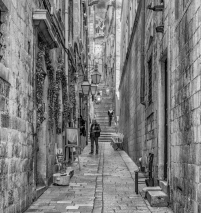 The Alleyway by Susan Grimes