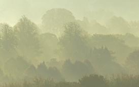 Misty morning by Stephen Gates ARPS