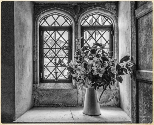 The Window by Den Heffernon