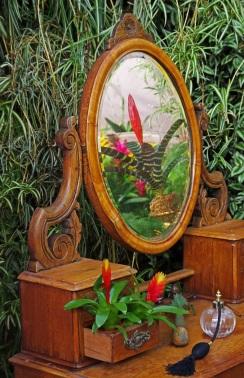 Mirror Reflection by Stephen Gates ARPS