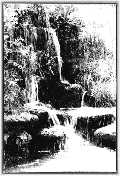 The Waterfall by Margaret Stredwick