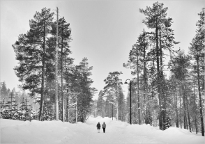 Walking in the Snow by Dave Harris LRPS
