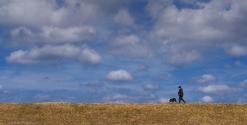 A Lonely Walk by Jeff Royce