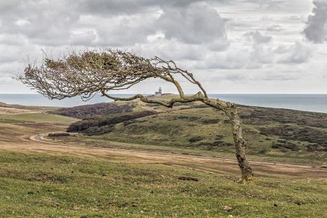 Birling Gap by Den Heffernon
