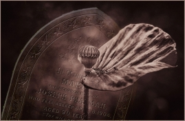 Fading Remembrance by Margaret Stredwick