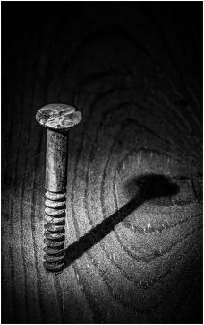 Rusty Old Screw by Jim Berkshire