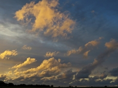 A Norfolk Evening by Stephen Gates ARPS