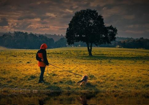 Evening Walk by Dave Harris LRPS