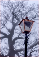Lamp in the Mist by Susan Grimes