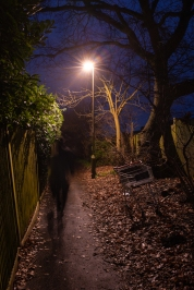 Trail by Jose Souto
